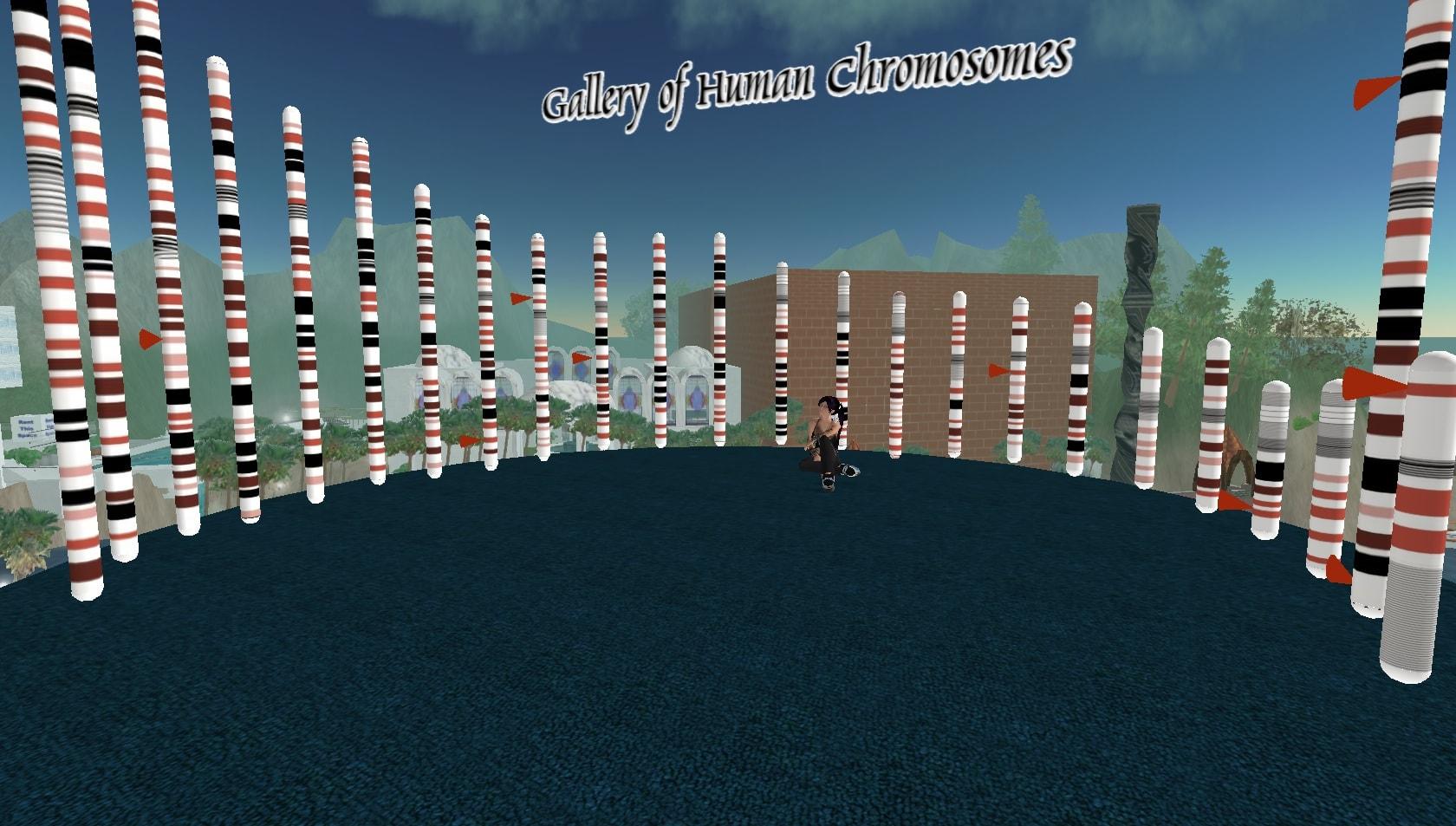 Die menschlichen Chromosomen in Second Life