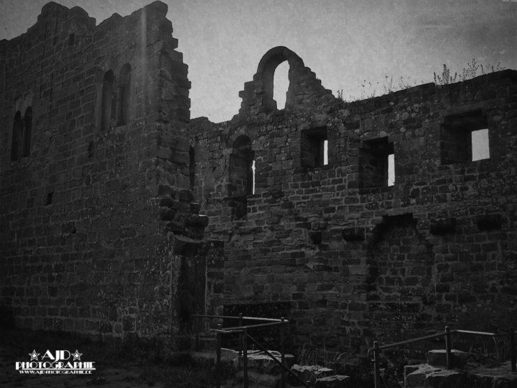 Burg Hohenecken