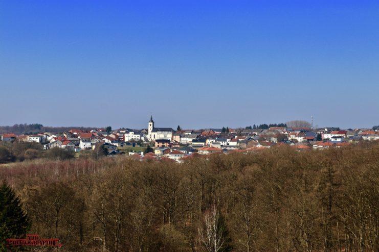 Baumwipfelpfad / Saarschleife, 16.03.2017